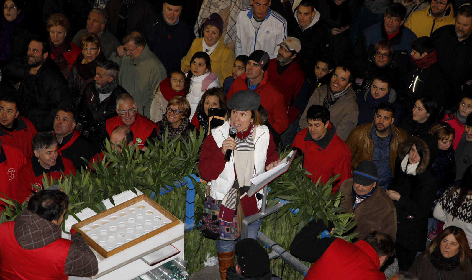 Confraria-Sant-Antoni-Benicarlo-Lloera-2016